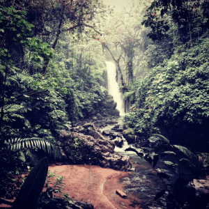 Reddit, Costa Rica, and May: Newish to reddit and decided I would give posting a shot. Pic I took of a neat waterfall in Costa Rica in May of last year.