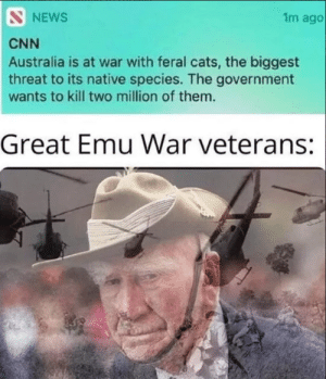 Cats, cnn.com, and News: NEWS  1m ago  CNN  Australia is at war with feral cats, the biggest  threat to its native species. The government  wants to kill two million of them.  Great Emu War veterans: