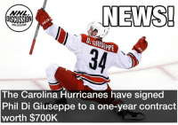 Memes, News, and National Hockey League (NHL): NEWS!  34  OISCUSSION  D: GIUSEPPE  SEPE  The Carolina Hurricanes have signed  Phil Di Giuseppe to a one-year contract  worth $700K The young winger has shown a ton of promise, but hasn't been able to crack the NHL for good. Will this be the year? DiGiuseppe Carolina Hurricanes nhldiscussion