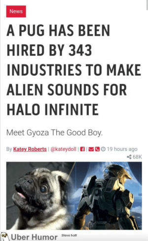 failnation:  Perfect casting: News  A PUG HAS BEEN  HIRED BY 343  INDUSTRIES TO MAKE  ALIEN SOUNDS FOR  HALO INFINITE  Meet Gyoza The Good Boy.  By Katey Roberts I@kateydoll  C019 hours ago  68K  Uber Humor  Steve holt! failnation:  Perfect casting