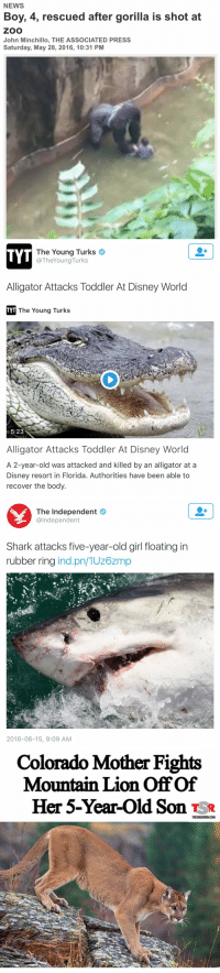 these animals ain't putting up with us no more..: NEWS  Boy, 4, rescued after gorilla is shot at  ZOO  John Minchillo, THE ASSOCIATED PRESS  Saturday, May 28, 2016, 10:31 PM   The Young Turks  TYT  @TheYoung Turks  Alligator Attacks Toddler At Disney World  TYT The Young Turks  5:23  Alligator Attacks Toddler At Disney World  A 2-year-old was attacked and killed by an alligator at a  Disney resort in Florida. Authorities have been able to  recover the body.   The Independent  @Independent  Shark attacks five-year-old girl floating in  rubber ring  ind pn/1UZ6Zm  2016-06-15, 9:09 AM   Colorado Mother Fights  Mountain Lion of of  Her 5-Year-old Son TSR  THESHADEROOMCOM these animals ain't putting up with us no more..