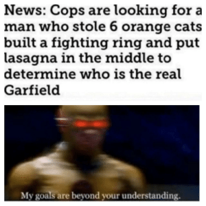 I wonder which one was real by penguingamer2251 MORE MEMES: News: Cops are looking for a  man who stole 6 orange cats  built a fighting ring and put  lasagna in the middle to  determine who is the real  Garfield  My goals are beyond your understanding. I wonder which one was real by penguingamer2251 MORE MEMES