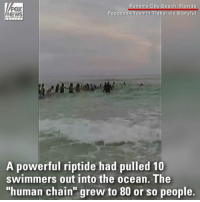 "WATCH: Roughly 80 strangers at a Florida beach formed a ""human chain"" to save a group of people from drowning. For more on this story, visit FoxNews.com: NEWS  Facebook  sm  oryfu  A powerful riptide had pulled 10  swimmers out into the ocean. The  ""human chain grew to 80 or so people. WATCH: Roughly 80 strangers at a Florida beach formed a ""human chain"" to save a group of people from drowning. For more on this story, visit FoxNews.com"