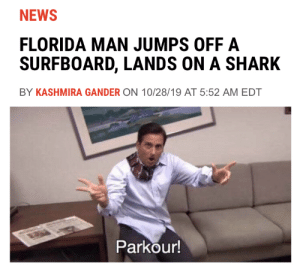 He strikes again: NEWS  FLORIDA MAN JUMPS OFF A  SURFBOARD, LANDS ON A SHARK  BY KASHMIRA GANDER ON 10/28/19 AT 5:52 AM EDT  Parkour! He strikes again