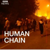 People form a human chain to put out a house fire during wildfires in Galicia, Spain. Regional authorities say four people died in the area. Prime Minister Mariano Rajoy has blamed arsonists for most of the deadly wildfires. fire firefighter galicia spain: NEWS  HUMAN  CHAIN People form a human chain to put out a house fire during wildfires in Galicia, Spain. Regional authorities say four people died in the area. Prime Minister Mariano Rajoy has blamed arsonists for most of the deadly wildfires. fire firefighter galicia spain