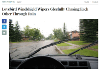 """<p>The Onion makes driving in the rain a much more joyful experience via /r/wholesomememes <a href=""""http://ift.tt/2sK5cxG"""">http://ift.tt/2sK5cxG</a></p>: NEWS IN PHOTOS 6.26.17  VOL 53  ISSUE 25  Lovebird Windshield Wipers Gleefully Chasing Each  Other Through Rain <p>The Onion makes driving in the rain a much more joyful experience via /r/wholesomememes <a href=""""http://ift.tt/2sK5cxG"""">http://ift.tt/2sK5cxG</a></p>"""