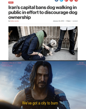 Dog are the best by bigdimitri MORE MEMES: NEWS  Iran's capital bans dog walking in  public in effort to discourage dog  ownership  7:39pm | Updated  By Emily Jacobs  January 29, 2019  MICROTECH HYORA VER. 2.1: 22.003  BIO 30:2  SYSTEM SETUP NAV  We've got a city to burn Dog are the best by bigdimitri MORE MEMES