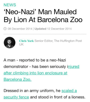 real-live-dragon:  nihilistic-void:  big-boss-official:  Circle of life I guess  lions are allies    why the fuck did he do that tho: NEWS  'Neo-Nazi' Man Mauleo  By Lion At Barcelona Zoo  08 December 2014 | Updated 12 December 2014  Chris York Senior Editor, The Huffington Post  UK  A man reported to be a neo-Nazi  demonstrator - has been seriously injured  after climbing into lion enclosure at  Barcelona Zog  Dressed in an army uniform, he scaled a  security fence and stood in front of a lioness real-live-dragon:  nihilistic-void:  big-boss-official:  Circle of life I guess  lions are allies    why the fuck did he do that tho