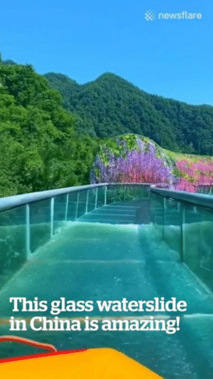 This glass waterslide in China lets you float under stunning hanging flowers! 😍💐: newsflare  This glass waterslide  in China is amazing! This glass waterslide in China lets you float under stunning hanging flowers! 😍💐