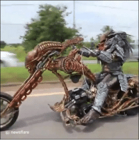 Work, Predator, and You: & newsflare When you catch Predator on his commute to work... 😂😱
