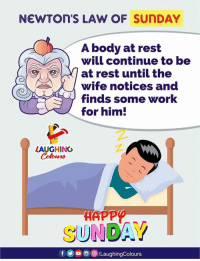 Work, Happy, and Sunday: NEWTOn'S LAW OF SUNDAY  A body at rest  will continue to be  at rest until the  wife notices and  finds some work  for him!  LAUGHING  HAPP  SUNDAY  ru  fO/LaughingColours Happy Sunday Guys :)
