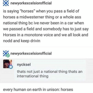 """: newyorkexcelsiorofficial  is saying """"horses"""" when you pass a field of  horses a midwesterner thing or a whole ass  national thing bc ive never been in a car when  we passed a field and somebody has to just say  Horses in a monotone voice and we all look and  nodd and keep drivin  newyorkexcelsiorofficial  nycksel  thats not just a national thing thats an  international thing  every human on earth in unison: horses"""