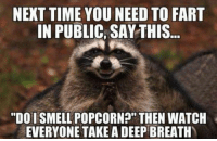 """pop corn: NEXT TIME YOU NEED TO FART  IN PUBLIC, SAY THIS.  """"DO I SMELL POPCORN?"""" THEN WATCH  EVERYONE TAKE A DEEP BREATH"""