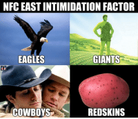 The NFC East...: NFC EASTINTIMIDATION FACTOR  EAGLES  GIANTS  REDSKINS  COWBOYS The NFC East...