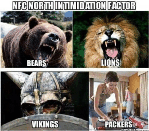 Bears Packers Funny Pictures: NFC NORTH INTIMIDATION FACTOR  LIONS  BEARS  PACKERS  VIKINGS  WhattoUMems.gem Bears Packers Funny Pictures