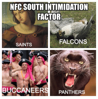 Memes, New Orleans Saints, and Falcons: NFC SOUTH INTIMIDATION  FACTOR  FALCONS  SAINTS  BUCCANEER  PANTHERS