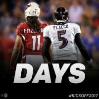 Memes, Nfl, and Cardinals: NFL  1 1  CARDINALS  RAVENS  FLACCO  FITZLI A  DAYS  #KICKOFF 2017 Counting down to #Kickoff2017...  115 DAYS! https://t.co/ynV6uoWbs7