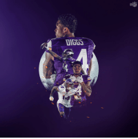 Birthday, Memes, and Nfl: NFL  DIGDS  KinGs HAPPY BIRTHDAY to @Vikings star WR @stefondiggs! 🎂  #SKOL https://t.co/0cMc1qS6qm