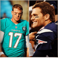 Nfl, Sports, and Squad: NFL  Dolphins Ryan Tannehill berates practice squad players? Tom Brady PAYS them for intercepting him, according to Donté Stallworth.