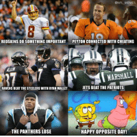 Crazy NFL!: @NFL MEMES  REDSKINS DO SOMETHING IMPORTANT  PEYTON CONNECTED WITH CHEATING  MARSHALL  JETS BEAT THE PATRIOTS  RAVENS BEAT THE STEELERS WITH RYAN MALLET  THE PANTHERS LOSE  HAPPY OPPOSITE DAY! Crazy NFL!