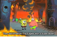 Philadelphia Eagles, Football, and Memes: @NFL MEMES  They did it Patrick! The Eagles wonaSuper Bowl! Philadelphia last night... https://t.co/zIvYZxywdL