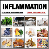 Definitely, Facebook, and Memes: NFLAMMATION  ELIMINATE INFLAMMATION CAUSE INFLAMMATION  IG: @CONSCIOUSVIBRANCY  LEAFY GREENS CHIA SEEDSREFINED SUGAR REFINED FLOUR  BLUEBERRIESPINEAPPLE  MEAT  ARTIFICIAL  SWEETENERS  GINGER  TURMERIC  GLUTEN Follow my bro ➡️ @consciousvibrancy If you have heart disease, high blood pressure, bacterial or viral infections, osteoporosis, arthritis, acid reflux, candidiasis, or acne, then you could also have chronic, low-grade inflammation. In fact, if you have any number of other diseases, it is likely you have inflammation. And if you want to get or remain healthy, you definitely want to reduce the damaging effects of it! Inflammation has a positive and negative affect in your body. Inflammation has a positive side because it helps your body respond to stress. But chronic, low-grade inflammation is thought to be one of the leading causes of disease, premature aging, and illness. When you get a cold, your body responds with inflammation in the form of a fever that helps you heal. The inflammation does its job, gets rid of the virus, and disappears. But if your immunity is compromised and your body is constantly stressed, you might experience chronic low-grade inflammation that leaves you more susceptible to illness and disease. It's important to realize that chronic inflammation is the source of many if not most diseases, including cancer, obesity, and heart disease, which essentially makes it the leading cause of death in the US. While inflammation is a perfectly normal and beneficial process that occurs when your body's white blood cells and chemicals protect you from foreign invaders like bacteria and viruses, it leads to trouble when the inflammatory response gets out of hand. Your diet has a lot to do with this chain of events. You can help your body fight inflammation by reducing stress, adjusting your diet, and by getting enough sunshine. Diet is a key part of your inflammation-fighting plan, and some foods have amazing anti-inflammatory properties. Consciousvibrancy HolisticAli Inflammation Turmeric IG 👉🏽 @realrawtruth FACEBOOK-YOUTUBE-SNAPCHAT 👉🏽 @holisticali SUBSCRIBE TO NEW YOUTUBE LINK IN BIO