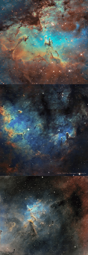 Target, Tumblr, and Blog: :NGC 7822 by Georges Che ssaigne te5seract:   Piliers de la creation SHO Hubble8  ngc 7822 SHO 33h15-2015v3    Ic 1805 SHO 28h du 30-12   by  georges chassaigne