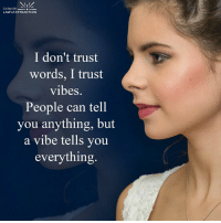 Energy doesen't lie.: NIA  Living the  LAW of ATTRACTION  I don't trust  words, I trust  vibes.  People can tell  you anything, but  a vibe tells you  everything Energy doesen't lie.