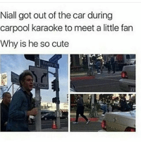 Cute, Goals, and Memes: Niall got out of the car during  carpool karaoke to meet a little fan  Why is he so cute Goals