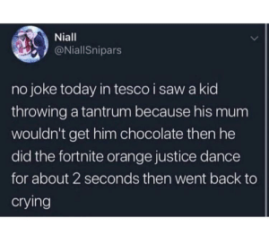 Crying, Dank, and Memes: Niall  @NiallSnipars  no joke today in tesco i saw a kid  throwing a tantrum because his mum  wouldn't get him chocolate then he  did the fortnite orange justice dance  for about 2 seconds then went back to  crying meirl by SClique01 MORE MEMES