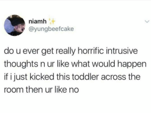 Dank, Memes, and Target: niamh  @yungbeefcake  do u ever get really horrific intrusive  thoughts n ur like what would happen  if i just kicked this toddler across the  room then ur like no Glad I'm not the only one by Totes_Goatz MORE MEMES