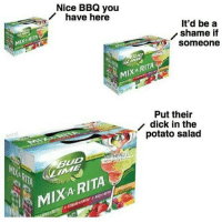Dick, Potato, and Dank Memes: Nice BBQ you  / have here  It'd be a  shame if  someone  MIXA RITA  MIXA RITA  Put their  / dick in the  potato salad  MIXA RITA @worstigaccount
