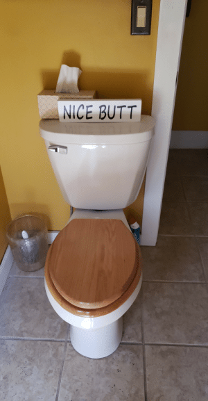 Butt, Nice, and You: NİCE BUTT What the toilet wants you to know