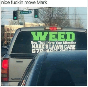 Way to go Mark: |nice fuckin move Mark  Bulhboro Dr  LMMY  ΥΕED  Now That I Have Your Attention  MARK'S LAWN CARE  679-4 7 T Way to go Mark