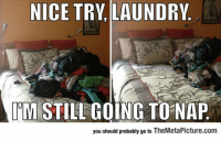Laundry, Tumblr, and Blog: NICE TRY, LAUNDRY  IM STILLGOING TO NAP  you should probably go to TheMetaPicture.com epicjohndoe:  Not This Time, Laundry