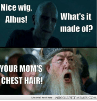 "Memes, Moms, and Hair: Nice wig,  Albus!  What's it  made of?  YOUR MOM'S  CHEST HAIR!  Like this? You'll hate  MUGGLENET MEMES.COM <p>VOLDEMORT&rsquo;S MOM! <a href=""http://ift.tt/1btvH7V"">http://ift.tt/1btvH7V</a></p>"