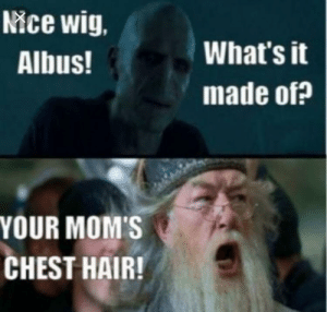 Aggressive Dumbledore: Nice wig.  What's it  Albus!  made of?  YOUR MOM'S  CHEST HAIR! Aggressive Dumbledore