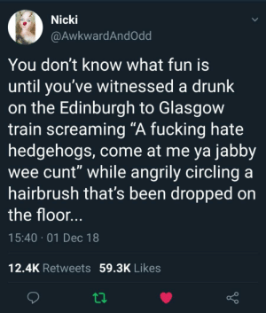 "A hedgehog in Scotland via /r/funny https://ift.tt/2KMeb8L: Nicki  @AwkwardAndOdd  You don't know what fun is  until you've witnessed a drunk  on the Edinburgh to Glasgow  train screaming ""A fucking hate  hedgehogs, come at me ya jabby  wee cunt"" while angrily circling a  hairbrush that's been dropped on  the floor  15:40 01 Dec 18  12.4K Retweets 59.3K Likes A hedgehog in Scotland via /r/funny https://ift.tt/2KMeb8L"