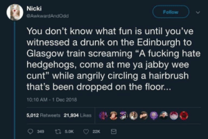"Drunk, Fucking, and Memes: Nicki  Follow  @AwkwardAndOdd  You don't know what fun is until you've  witnessed a drunk on the Edinburgh to  Glasgow train screaming ""A fucking hate  hedgehogs, come at me ya jabby wee  cunt"" while angrily circling a hairbrush  that's been dropped on the floor..  10:10 AM 1 Dec 2018  5,012 Retweets 21,934 Likes  ti 5.0K  349  22K 32+ Memes That Are Too AWESOME To Digest – Sarcasm"