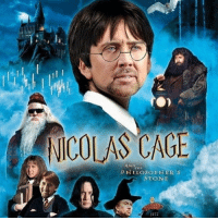 Memes, Nicolas Cage, and 🤖: NICOLAS CAGE  AND  PHILOSOPHER'S  STONE  5972 Cant wait for this