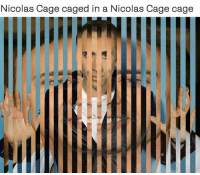 Nicolas Caged: Nicolas Cage caged in a Nicolas Cage cage  IE  LL  T/C/