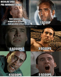 Flexing, Memes, and Nicolas Cage: NICOLAS CAGE  PRE-WORKOUT SCALE  TAKE SUGGESTED  NUMBER OF SCOOPS  1 SCOOP  FOR DESIRED EFFECT  @INDOMINUS REX  3 SCOOPS  2 SCOOPS  5 SCOOPS  4 SCOOPS 👈🏽 Taag @indominus_flex
