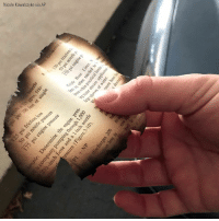 "Fire, Memes, and Saw: Nicole Kowalczyke via AP A woman in Chico, California said she saw an ""ominous"" piece of paper flutter out of the sky when she went outside to look at smoke from the Camp Fire, which was blazing about 10 miles away. Coincidentally, it appeared to be a burnt page from a fire manual."