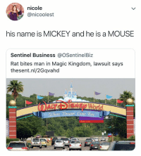 True, Business, and Magic: nicole  @nicoolest  his name is MICKEY and he is a MOUSE  Sentinel Business @OSentinelBiz  Rat bites man in Magic Kingdom, lawsuit says  thesent.nl/2Gqvahd  ere Dreanms Come True he's just going through a little bit of a tough time!!