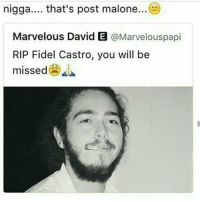 Post my lion ?: nigga.... that's post malone  Marvelous David E  @Marvelouspapi  RIP Fidel Castro, you will be  missed Post my lion ?