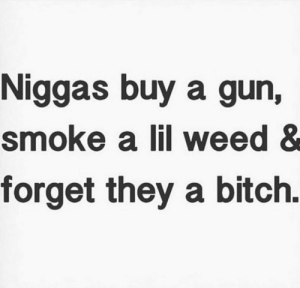 Bitch, Weed, and Gun: Niggas buy a gun,  smoke a lil weed &  forget they a bitch.