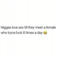 Love, Memes, and Sex: Niggas love sex till they meet a female  who tryna fuck 6 times a day IT'S ALL LOVE