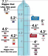 "Memes, China, and Australia: Niggas that  Like this post  Spost malonely  5.7""  GERMANY  5.5""  5.2""  GLOBAL  AVerage  5""  AUSTRALIA  USA  4.6""  4.5""  VIENAM 4.2""  SINGAPORE  INDONESIA  4.3""  MALAYSIA  4.3"":  PHILIPPINES  ASEAN  Average  MYANMAR  JAPAN  4""  CHINA  THAILAND  CAMBODIA  LAOS  3.8  Niggas that  Don't like this post"