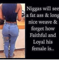 Niggas will see  a fat ass & long  nice weave &  forget howw  Faithful and  Loyal his  female is