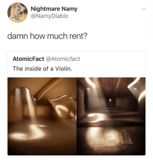 Music, Rap, and Tits: Nightmare Namy  @NamyDiablo  damn how much rent?  AtomicFact @Atomicfact  The inside of a Violin. super-shar: goldenpoc:   pettyqueer:  philtardis:  choro-q: Uhhhh… Not sure if the original poster knows how small a violin is- let me break it down for you. It's too small to live in. Violins are musical instruments that are to be played by people and they are small enough to carry on your shoulder, so no, you can't live inside of one. It's a shame I even have to explain this, people these days aren't involved with the arts and rather listen to rap music.   ^ TRUE….    I feel like this was a joke. Like honestly of that did not say inside a violin. Someone could've thought it was an attic or a room. Like calm ya tits Ruth.   Exactly! I was like wtf she pressed about a joke 😂